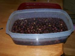 Brining the pitted olives